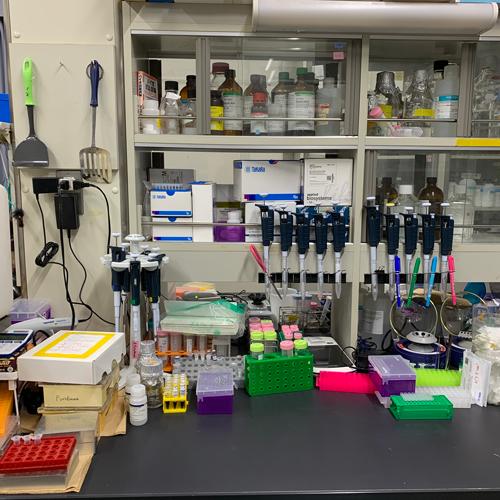 分子生物学実験や生化学実験を行う実験台です。<br>散らかしているわけではなく、頑張っている証拠??